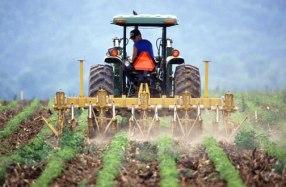 small-farm-tractors